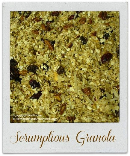 52 Weeks of Fresh Breakfast Ideas - Fresh Granola - Guest