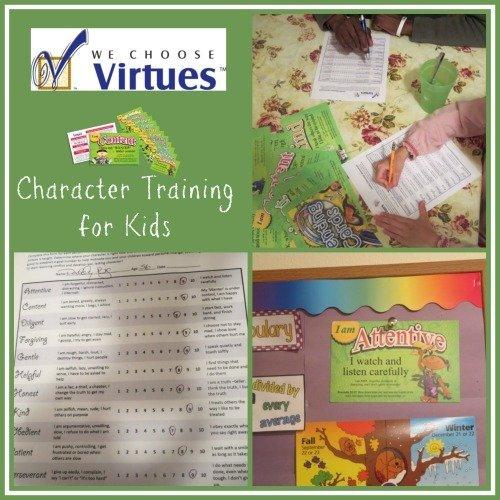 we-choose-virtues