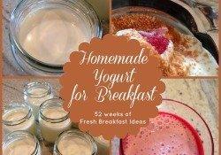 homemade-yogurt-breakfast