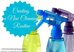 new-cleaning-routine