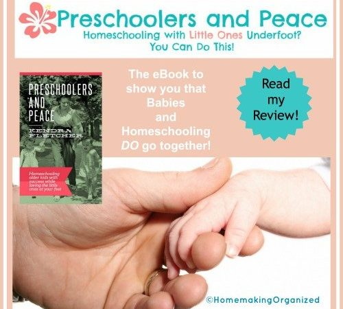 Homeschool Your Older Children With Little Ones at Your Feet a Review