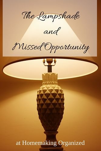 The Dollar Lampshade and Missed Opportunity
