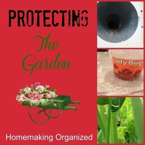 Protecting Your Garden June Garden Party Homemaking