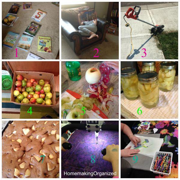Week-August-10-Homemaking_organized