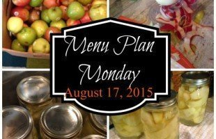 menu-plan-monday-817