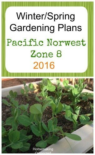 Planning the Garden – Winter/Spring Edition 2016 – Zone 8
