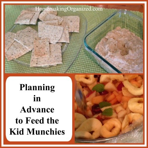 Summer Planning for Kid Munchies