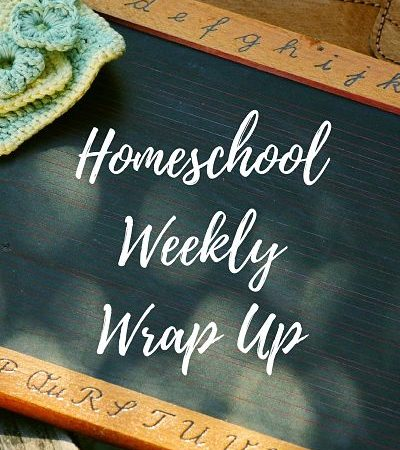 Homeschool Weekly Wrap Up February 10, 2017