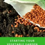 Starting Your Vegetable Garden From Seeds {How To}