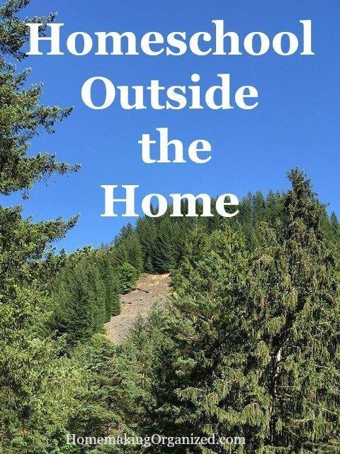 Back to School Blog Hop Day 4 : Homeschooling Outside the Home (aka field trips)