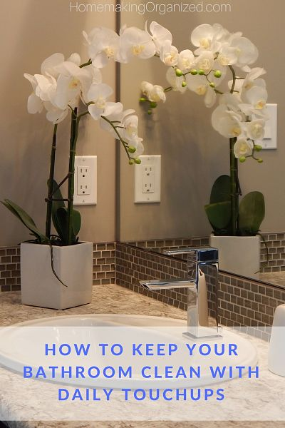Homemaking organized encouragement for life at home for How to keep a toilet clean