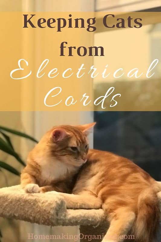 how to keep cats from chewing on electrical cords homemaking organized. Black Bedroom Furniture Sets. Home Design Ideas