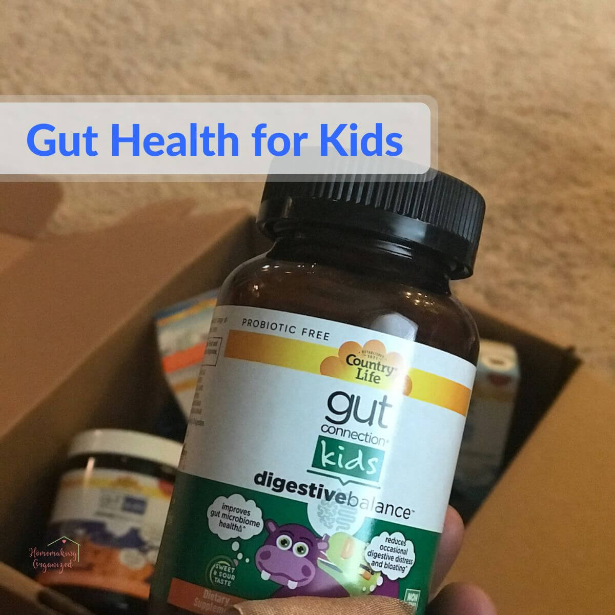 Gut Connection Kids Prebiotic Supplements by Country Life