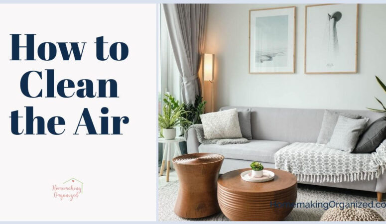Clean Your Air When You Clean Your Home with an Air Purifier